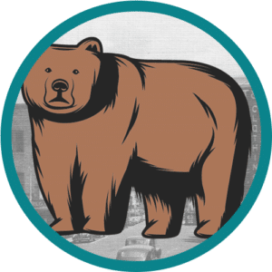 The Grizzly Level of Website Management Services in Bradenton, Florida
