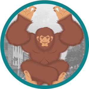 The Sasquatch Level of Website Management Services in Bradenton, Florida